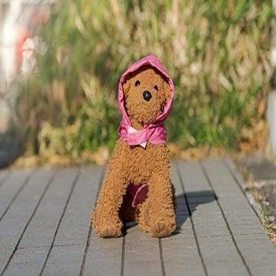 小型犬用AngelAMACAPA