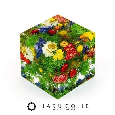 ハルコレ クリスタルアートリウム®︎ 認定レッスン