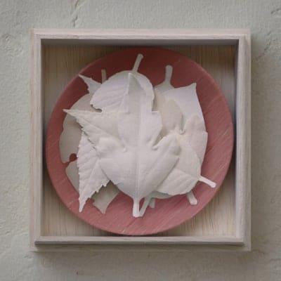 数量限定 和紙でできたお香 HAKO 8枚箱入り/紅葉(桐箱入り)/作家皿付き