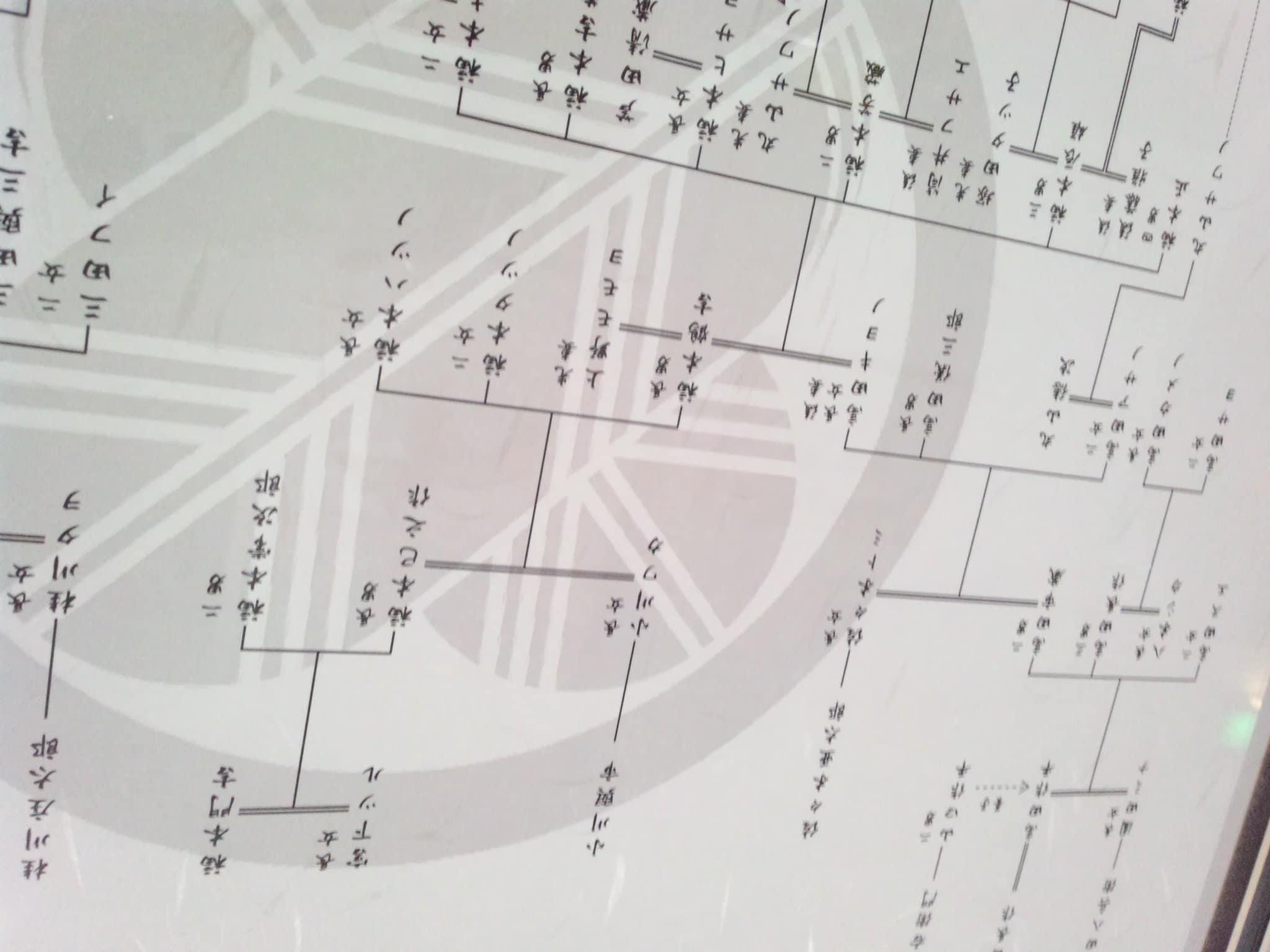歴史調査士が作る!あなたのルーツをたどる200年本格家系図作成チケット(2系統)のイメージその3