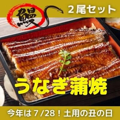【2尾セット】健康うなぎ蒲焼!健康思考の日本人のために日本人がイン...