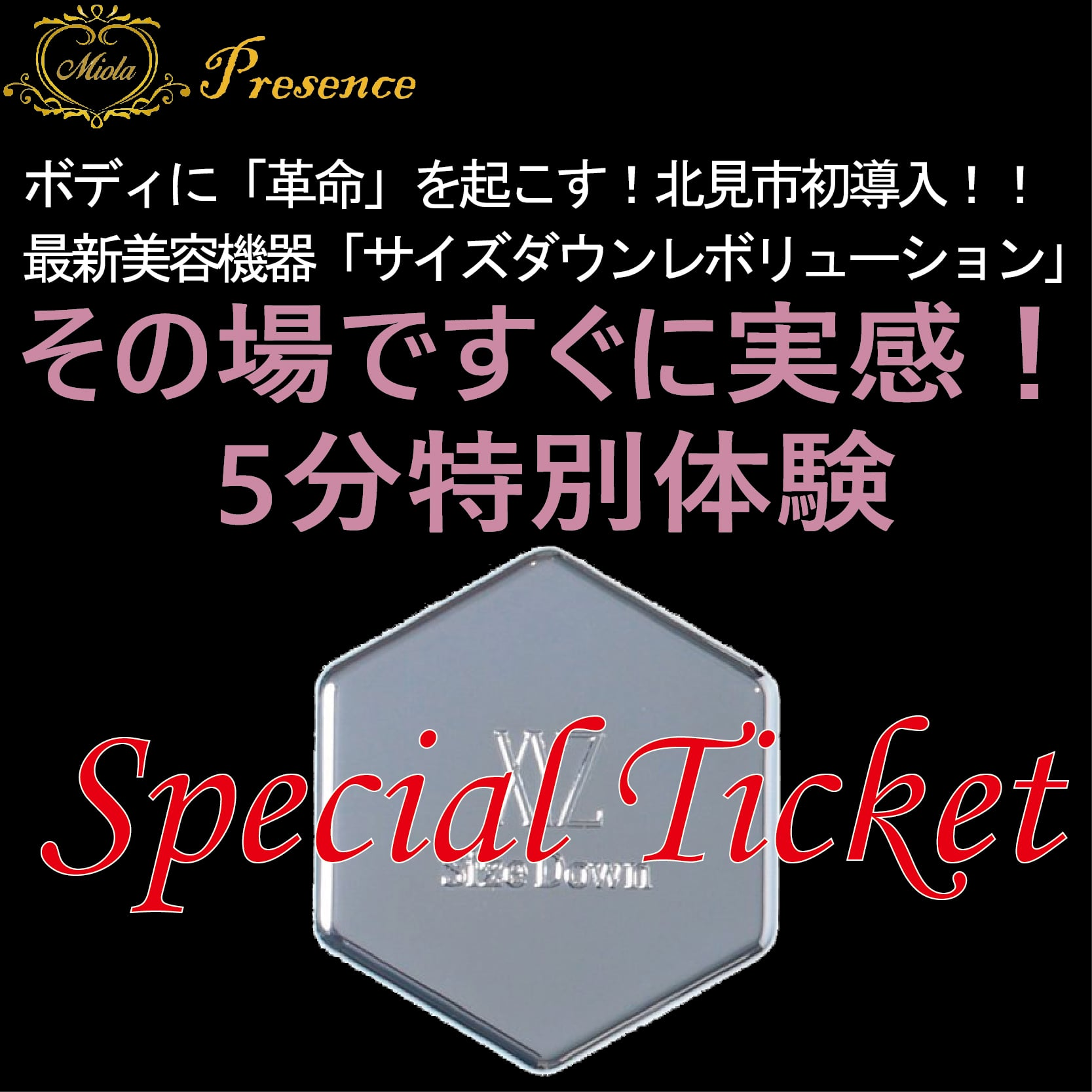 【特別体験】サイズダウンレボリューション体験会チケットのイメージその1