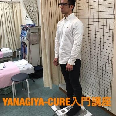 YANAGIYA-CURE入門講座2期正中線を診る