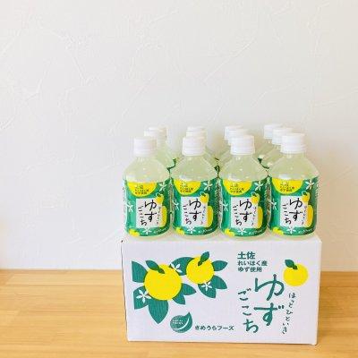 ほっとひといきゆずごこち 12本入り(箱) 高知県産ゆず使用