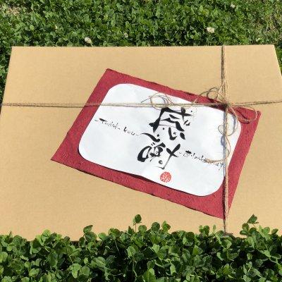 Kさま・Mさま専用【2周年記念ギフト】