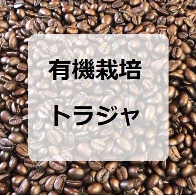 [当店人気ナンバー2]有機栽培トラジャ100g×2/インドネシア産コーヒー豆