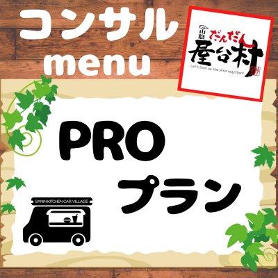 デリバリーキッチンカープロデュース【PROプラン】