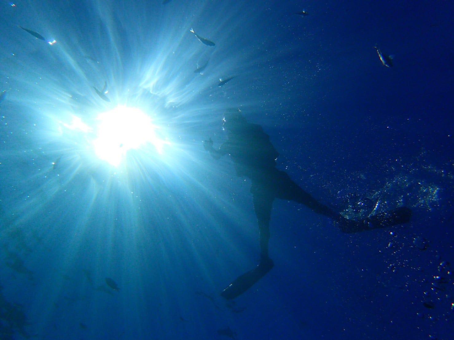 【BBQシェフ付き】ダイビングライセンス取得しながら沖縄のビーチでバーベキューしませんか?のイメージその5
