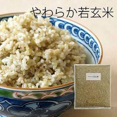 やわらか若玄米 【1kg×1袋】(富山県産コシヒカリまたは滋賀県産きぬむすめ)