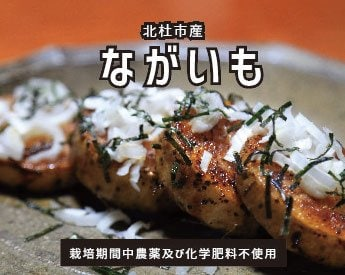 【ながいもステーキは絶品】ながいも(5kg箱)