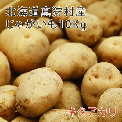 『キタアカリ10kg』北海道真狩村ごとう農園のじゃがいも