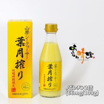 山原シークヮーサー葉月搾り 300ml/沖縄産青切りシークワーサー果汁100%原液ジュース/ノビレチンおよそ2倍で健康維持やダイエット/美容を意識する方に