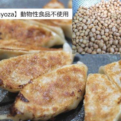 有機小麦・無農薬大豆のビーガン冷凍餃子