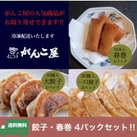 送料無料!!がんこ屋特製|餃子・春巻き4パックセット(冷凍)
