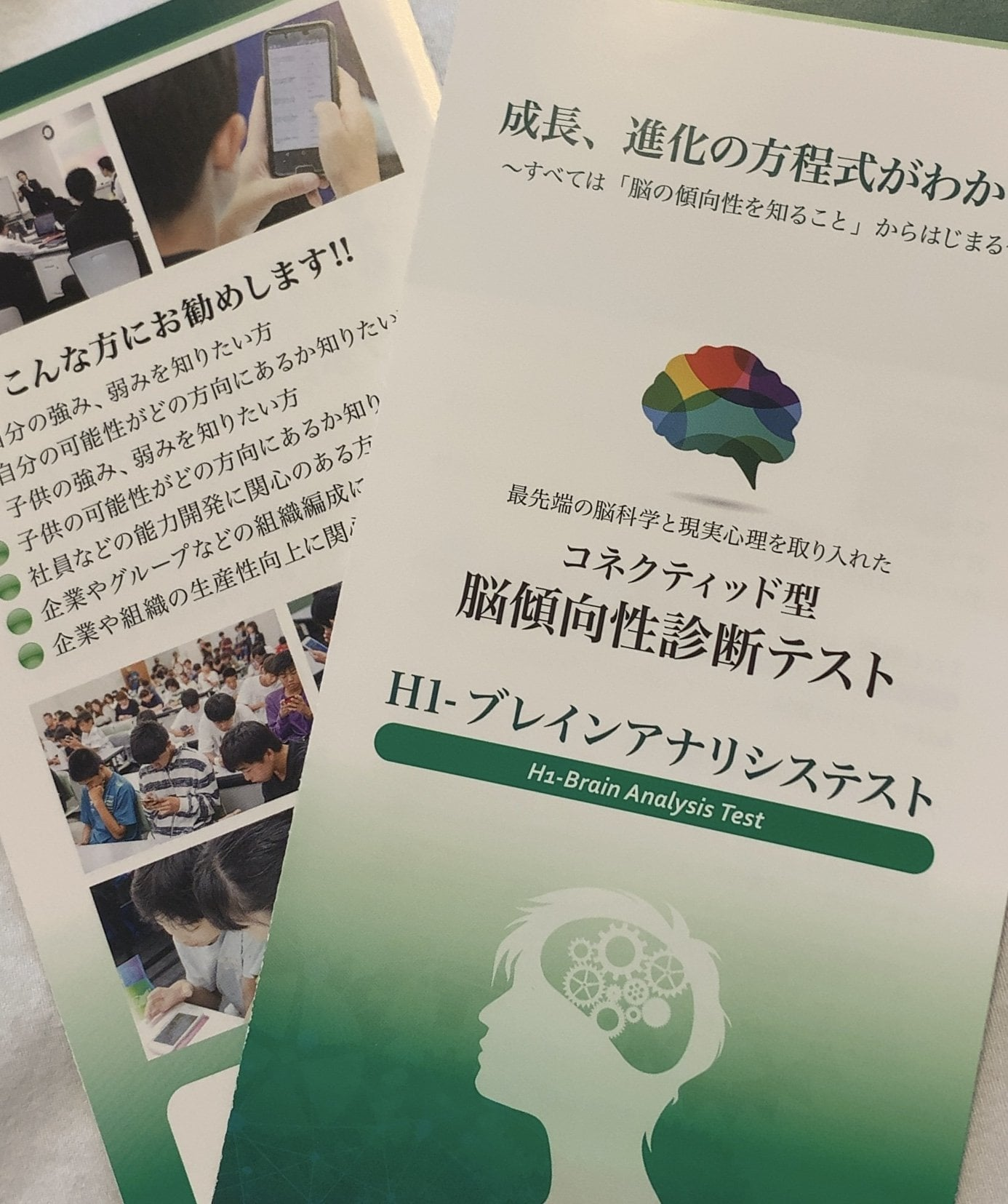 脳傾向性診断テスト・解説・アドバイスのイメージその1