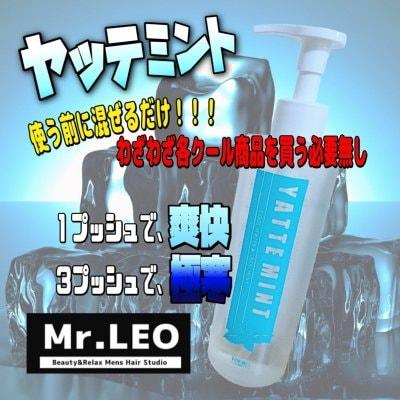 ヤッテミント 200㎖ 【Mr.LEO ミスターレオ 岐阜 各務原】
