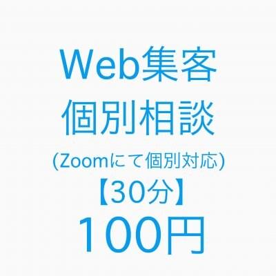 Web集客個別面談(Zoomにて個別対応30分)5月末までの特別価格990円⇒100円