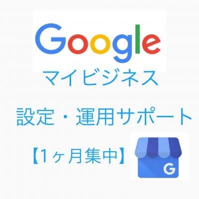Googleマイビジネス設定・運用サポート(Zoomにて個別対応)1ヶ月質問し放題