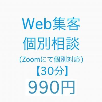 Web集客個別面談(Zoomにて個別対応30分)990円