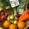 【みなこめこ付き】ぐるふりがオススメするスマイルファクトリーの季節のオーガニック野菜7品と米粉セット