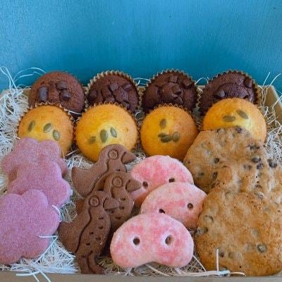 焼き菓子ギフト【クッキー&ケーキ】《6種20個入り》