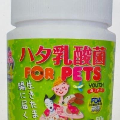 ペット用「ハタ乳酸菌 FOR PET」