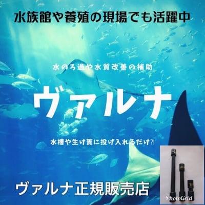ヴァルナ【超特大】水槽用(対応水量800t)熱帯魚・水槽・ろ過
