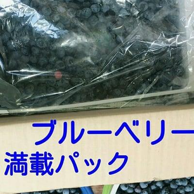 送料込み(沖縄及び離島対応不可)!!大好評のブルーベリーぎっしりパック!!たっぷり1kg超え!奈良山麓野菜ハリーのベジタブルBOX