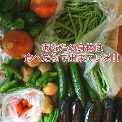 【先行予約販売】旬のお野菜詰め合わせパック