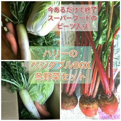◆スーパーフードのビーツ入り!!旬の冬野菜ぎっしり入った詰め合わせパッ...