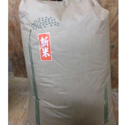 無施肥無農薬栽培兵庫県豊岡 成田市雄さんのコシヒカリ玄米30kg
