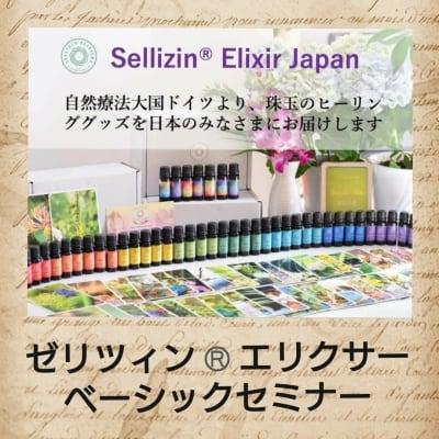 ゼリツィンRエリクサー ベーシックセミナー【オンライン講座も可能】
