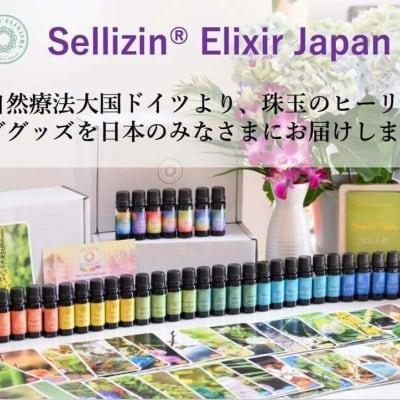 ゼリツィンRエリクサー カードリーディング【オンライン】