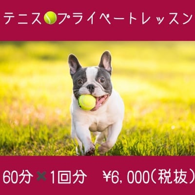 テニスレッスン/プライベートレッスン◇60分×1回分