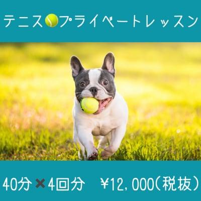 テニスレッスン/プライベートレッスン◇40分×4回分