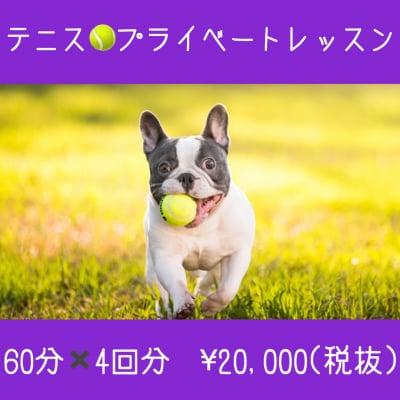 テニスレッスン/プライベートレッスン◇60分×4回分