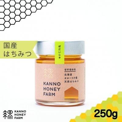 【当店人気ナンバー1】北海道産天然はちみつ 菩提樹ハチミツ 250g