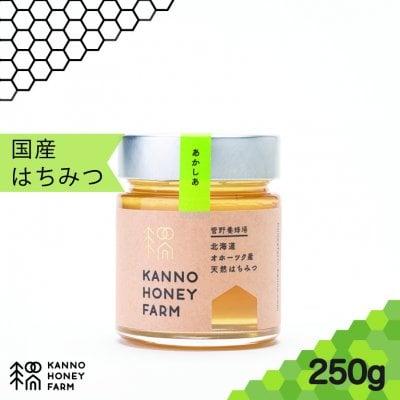 【どなたでも食べやすい!】北海道産天然はちみつ アカシアはちみつ 250g