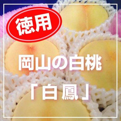 徳用・岡山の白桃「白鳳」2キロ