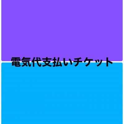 12/15ご請求電気代支払い用チケット