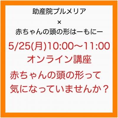 5/25(月)10時【プルメリア×はーもにー 赤ちゃんの頭の形オンライン講座】