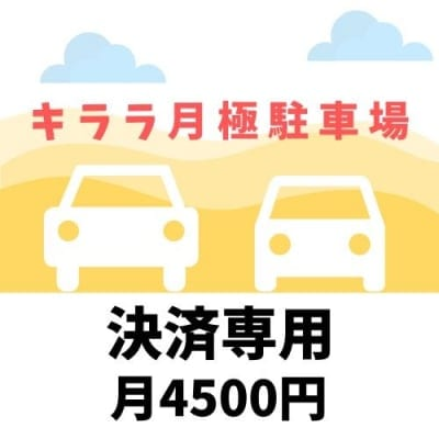 M様専用 キララ6ヶ月極駐車場支払い専用チケット