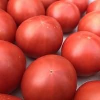 高糖度大玉トマト「贅沢」3kg