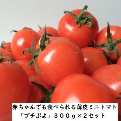 赤ちゃんでも食べられる薄皮ミニトマト「プチぷよ」 300g×2