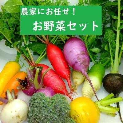 【送料込】畑より直送!旬のお野菜セット◆埼玉産◆6−8品詰め合わせ