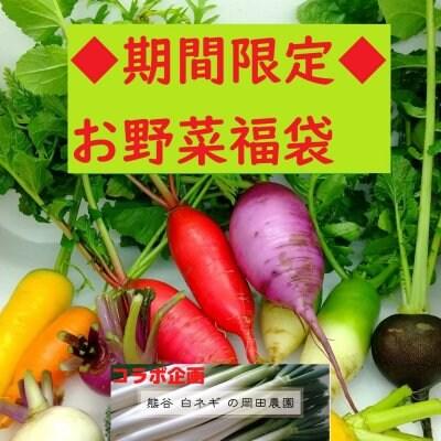 【送料無料】◆岡田農園とのコラボお野菜福袋◆埼玉産◆たっぷり10品以上...