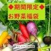 【送料無料】◆岡田農園とのコラボお野菜福袋◆埼玉産◆たっぷり10品以上◆数量限定