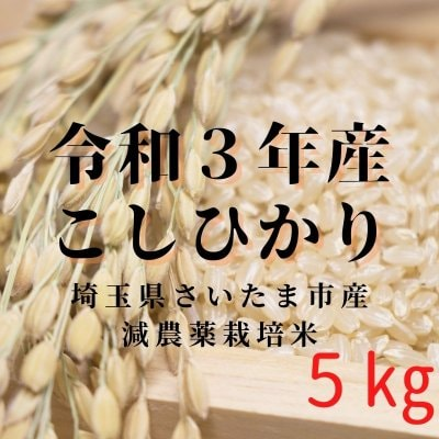 ◆コシヒカリ◆令和3年産◆5kg◇埼玉県さいたま市産◇