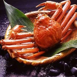 【身入り抜群のA級品!】カナダ産ボイルズワイガニ姿・約600g×1尾 冷凍ズワイ蟹