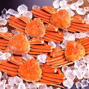 【身入り抜群のA級品!】カナダ産ボイルズワイガニ姿・約600g×5尾 冷凍ズワイ蟹